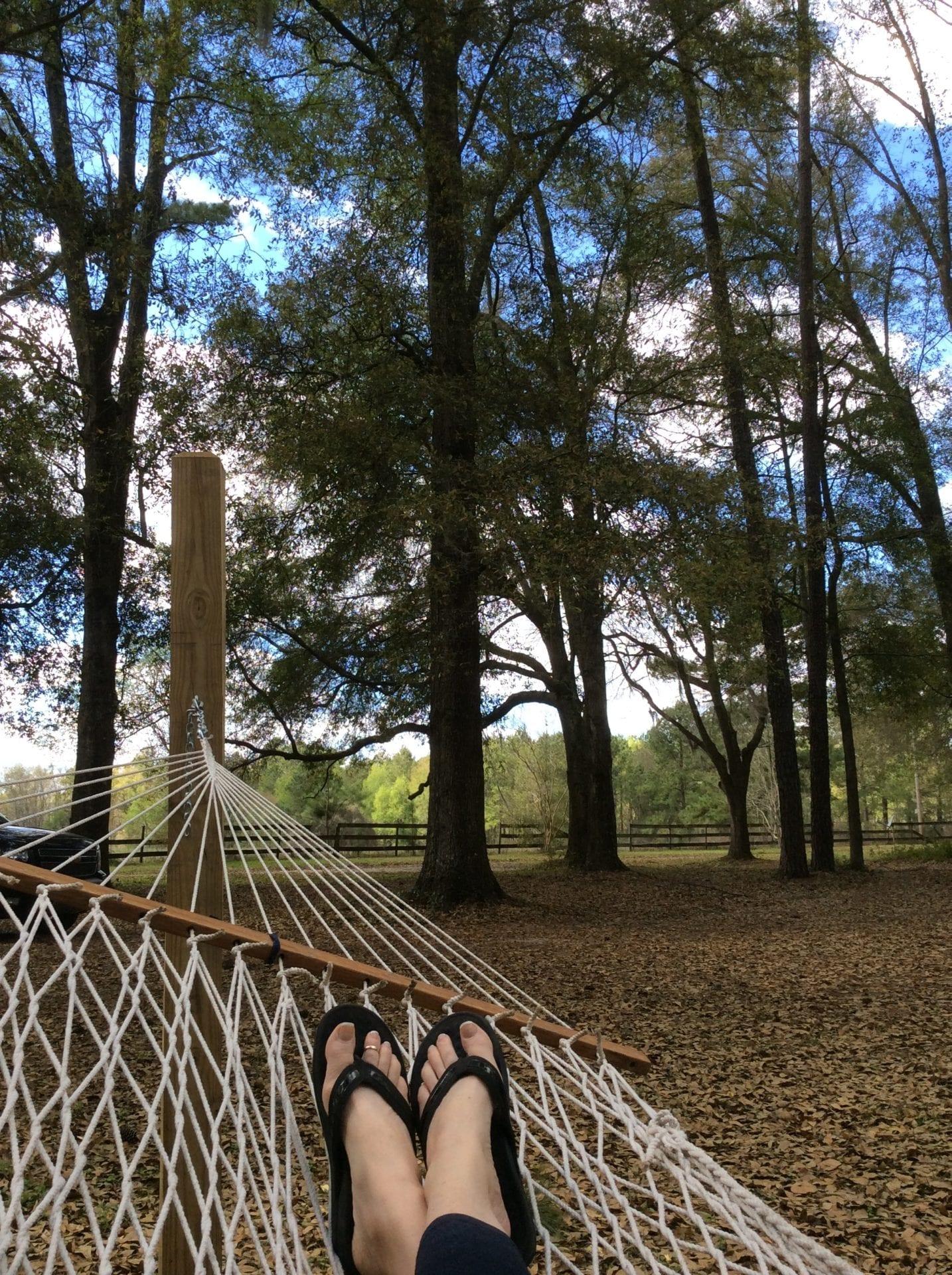 Tanya Chappell hammock spring